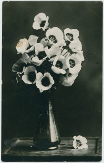 Flowers in Vase on a Table, Possible in Lehr Residence [1]