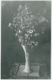 Flowers in Vase on a Table, Possible in Lehr Residence [4] | Colorado Wild Flowers