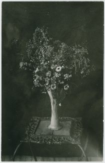 Flowers in Vase on a Table, Possible in Lehr Residence [5] | Colorado Wild Flowers